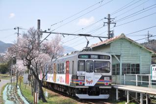 2011年4月18日 上田電鉄別所線 八木沢 1000系1003F