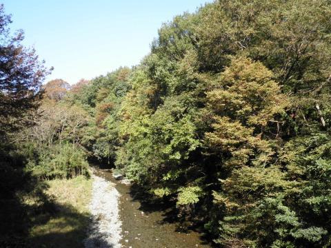 秋の葛葉渓谷88