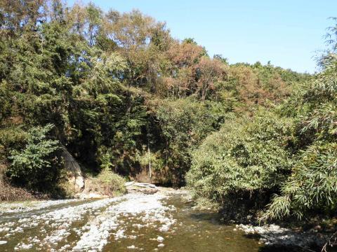 秋の葛葉川76