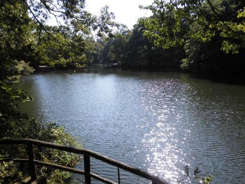 秋の湖畔47
