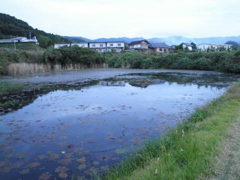 秋の新池92