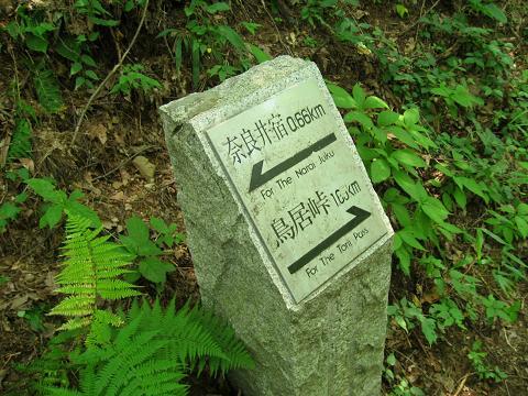 鳥居峠まで1.65km