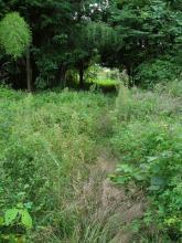 正沢川越えの旧道