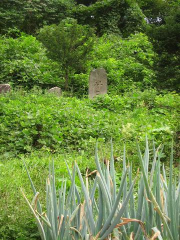 塩渕の石碑群