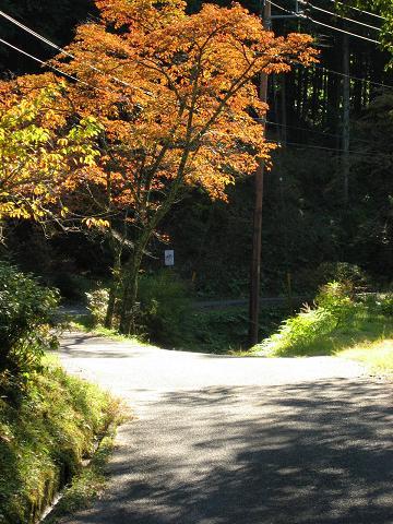蛇石付近の旧中山道