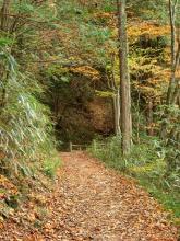 男滝女滝上の旧道