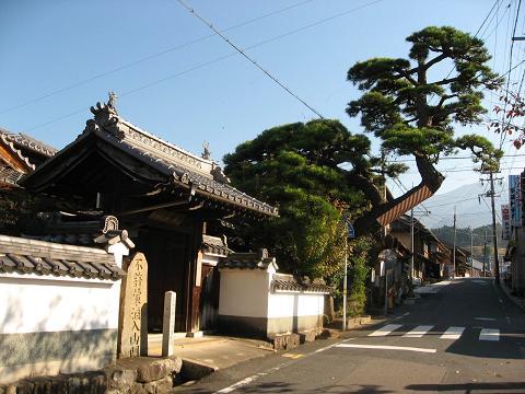善昌寺と門冠の松
