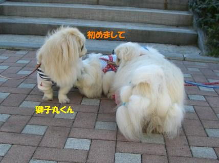 20071103220946.jpg