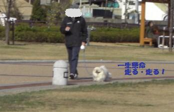 14散歩2