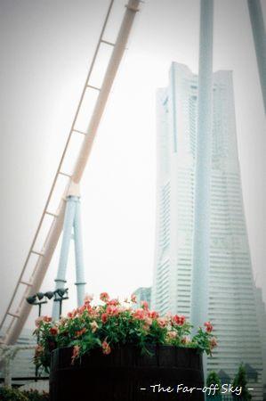 2011-06-26-01.jpg
