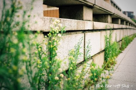 2011-08-05-01.jpg