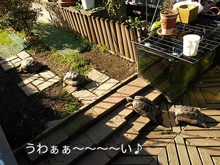 20080109_osu1.jpg