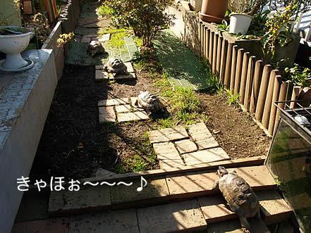 20080109_osu2.jpg