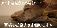 10046316401_s.jpg
