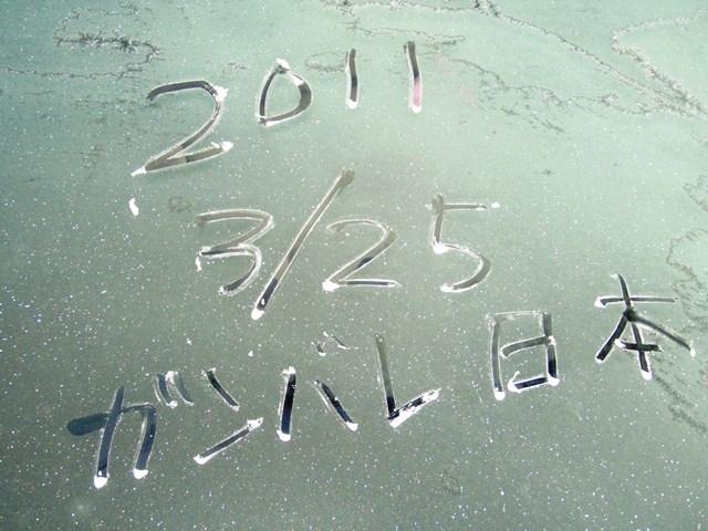 寒い朝110325