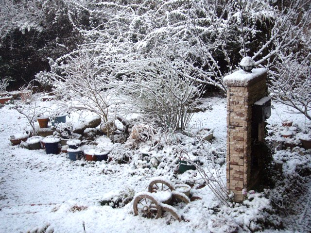 雪の庭110325