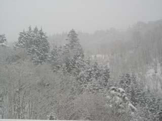 3月30日なのに新雪50cm!
