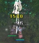 動物盾でもイケチャゥョ(`・ω・´)+