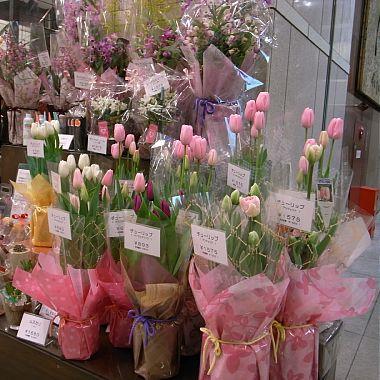 花屋のチューリップ