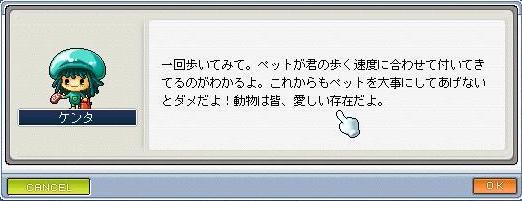 20070517213143.jpg