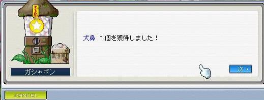 20070827211628.jpg