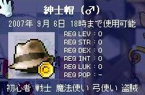 20070905221616.jpg