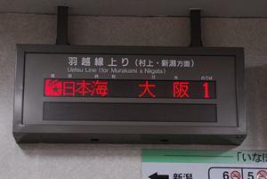 DSC_8912_R.jpg