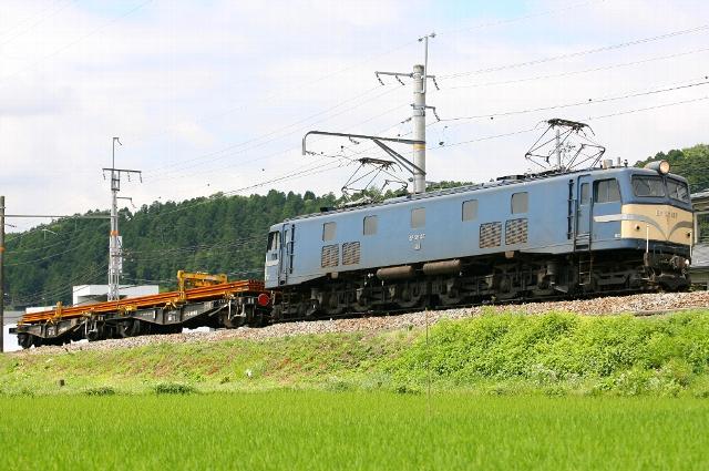 SC9W4351.jpg