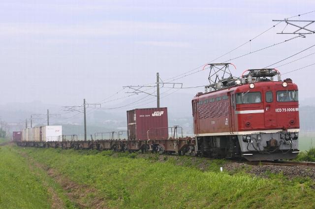 SC9W4804.jpg
