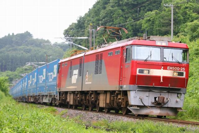 SC9W5200.jpg