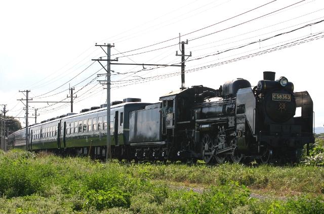 SC9W7534.jpg