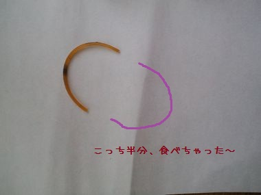 PAP_0059-201116.jpg
