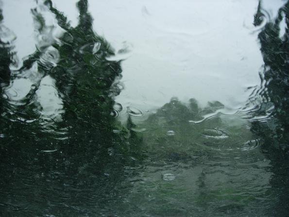 DSCN5520雷雨