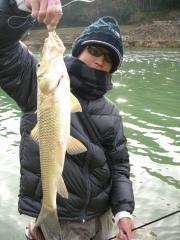 138 ニゴイ(はげ川)ジャバスティック