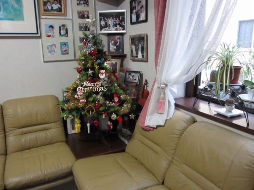 23.11.19クリスマスツリー 037_ks