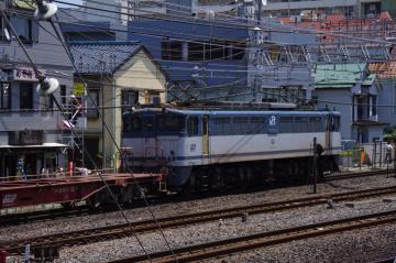 IMGP7451.jpg