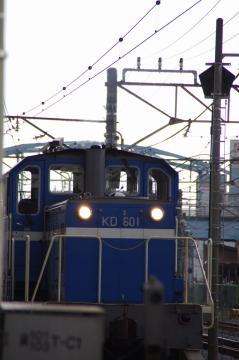 IMGP9525.jpg