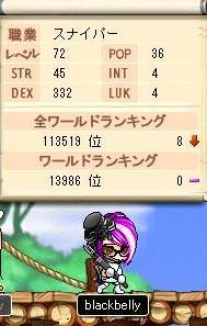Maple1531@.jpg