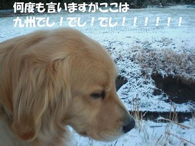 CIMG8940.jpg