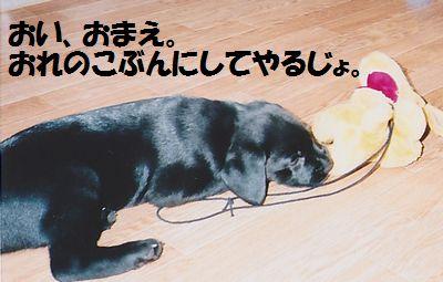 110327_blogjun2.jpg