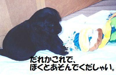 110327_blogjun3.jpg