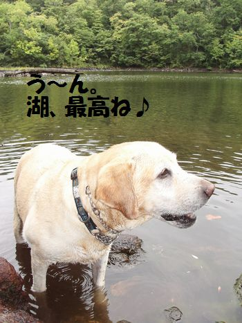 110329_blogubu4.jpg
