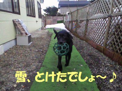 110402_blogjun1.jpg
