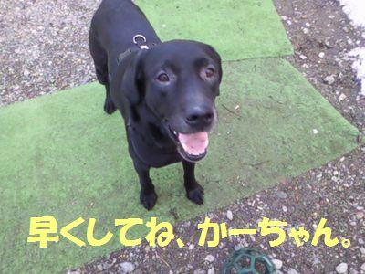 110402_blogjun2.jpg
