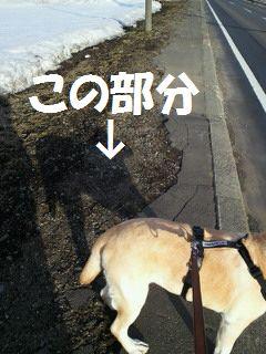 110402_blogubu1.jpg
