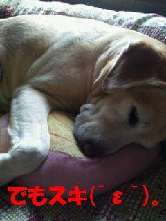 110410_blogubu6.jpg