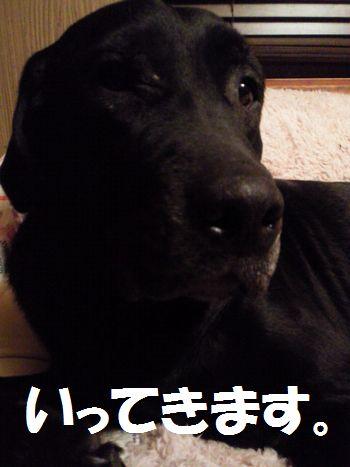 110412_blogjun.jpg