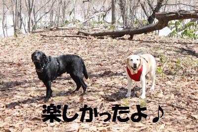 110424_blogubujun.jpg