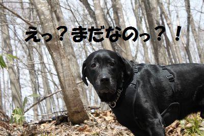 110426_blogjun.jpg