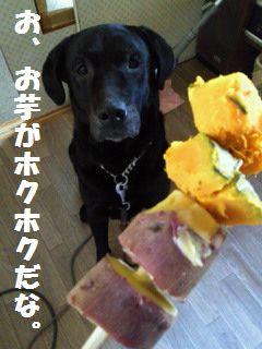 110506_blogjun2.jpg
